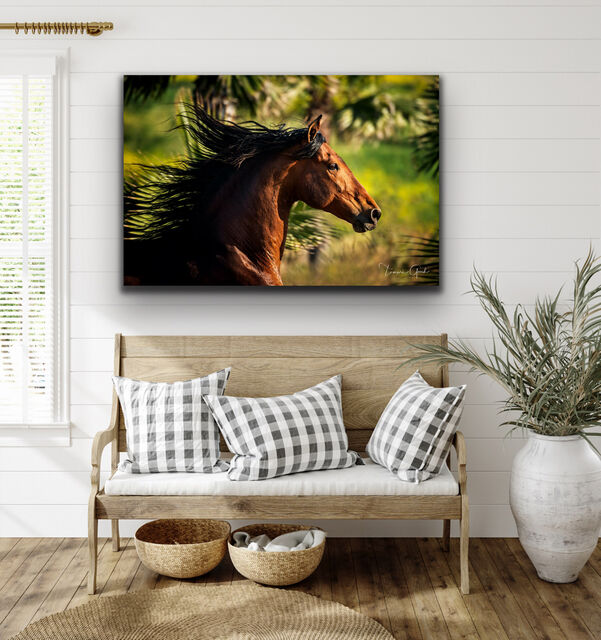 Fine Art Limited Edition Equine Fine Art Print hanging over a bench in a foyer.