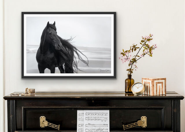 A fine art limited edition print of a Friesian horse on the beach done in black and white, shown framed on Lumachrome TruLife Acrylic.
