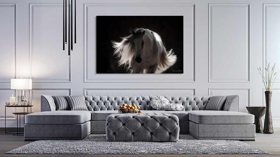 Andalusian, PRE, Pure Raza Espanola, horse, equine, equestrian, art, print, photo, photography, living room, couch, home, decor,