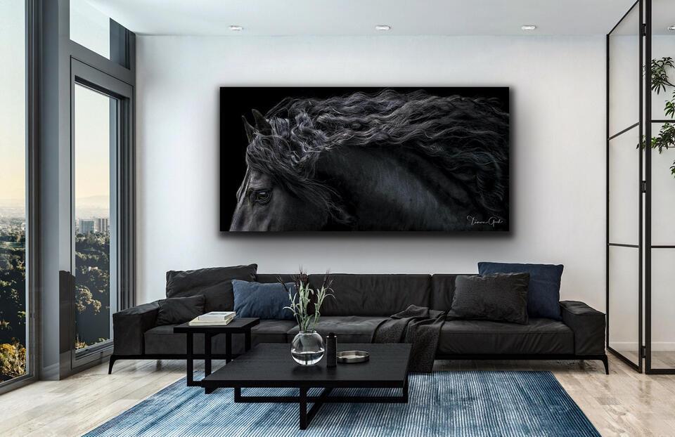 Friesian, horse, equine, cheval, caballos, print, photo, photography, art, wall, equestrian, baroque, panorama, metal, aluminum, tru-life acrylic, interior, design, home, office, decor, limited editio