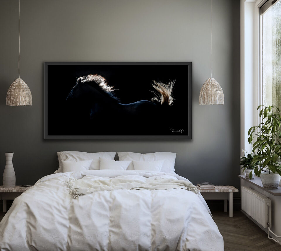 Lusitano, horse, PSL, equine, equestrian, photograph, photo, print, art, wall, interior, design, framed, bedroom, pano, backlight, luxury, fine art, limited, edition