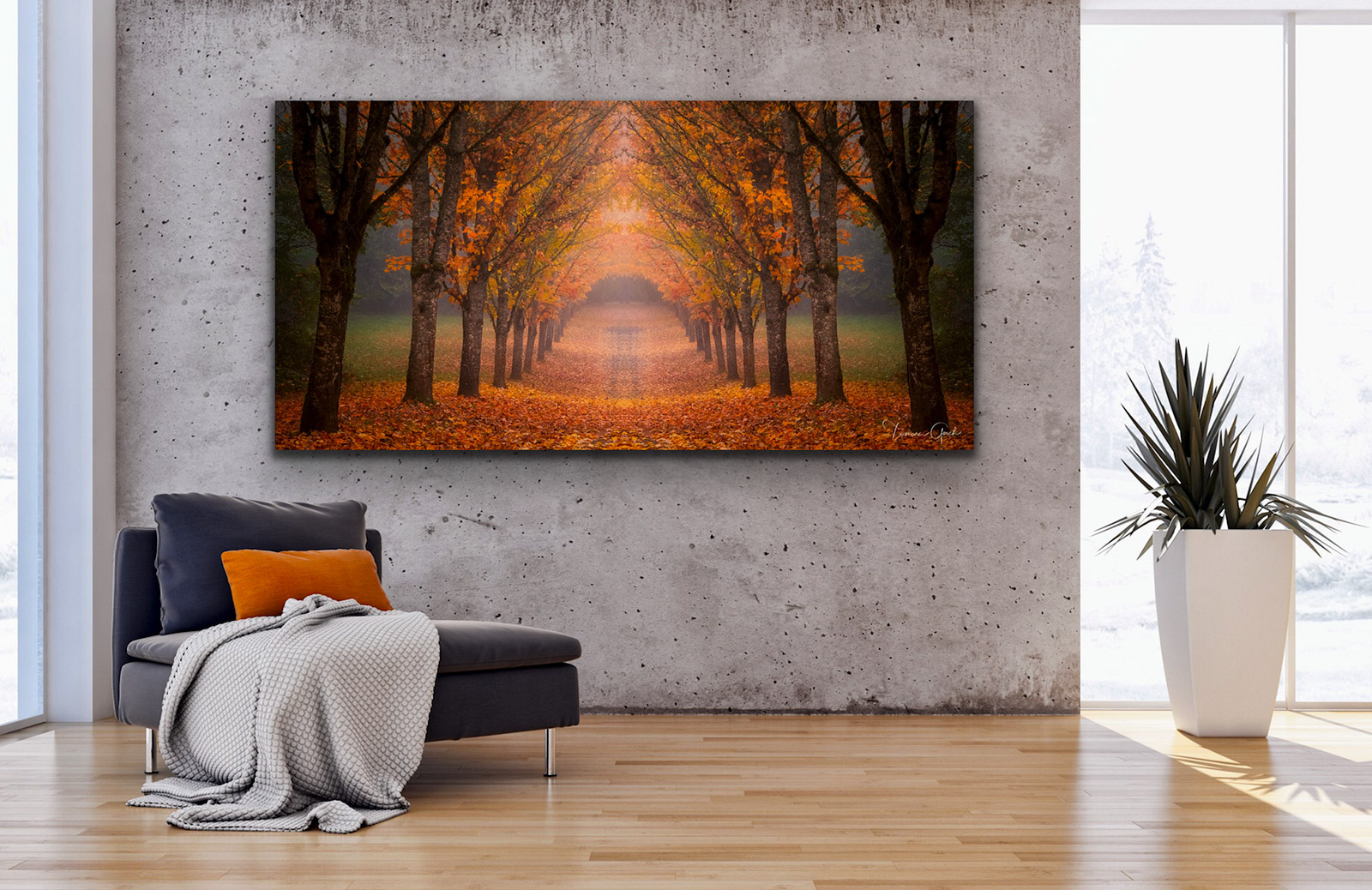 wall, home, decor, interior, design, real estate, staging, plexiglass, acrylic, aluminum, metal, paper, museum, quality, autumn, fall, color, trees, drive, lane, road, room, photo